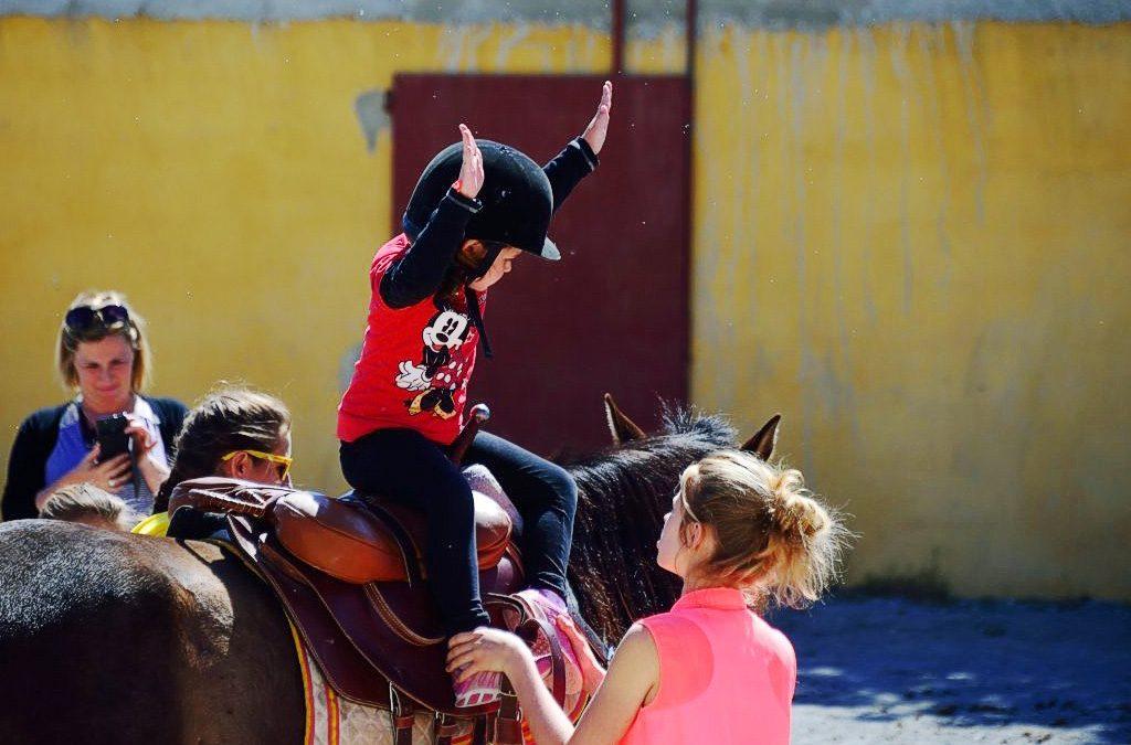 Ecole d'Equitation et Pensions